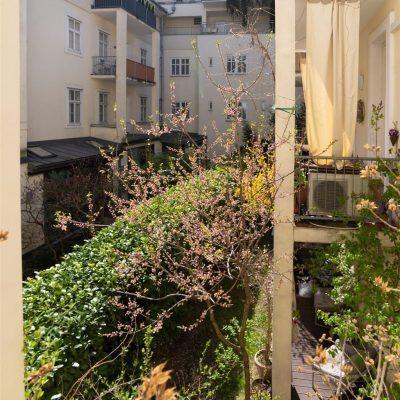 Wohnungspaket inmitten der Altstadt von Wien -  Vorschau 23